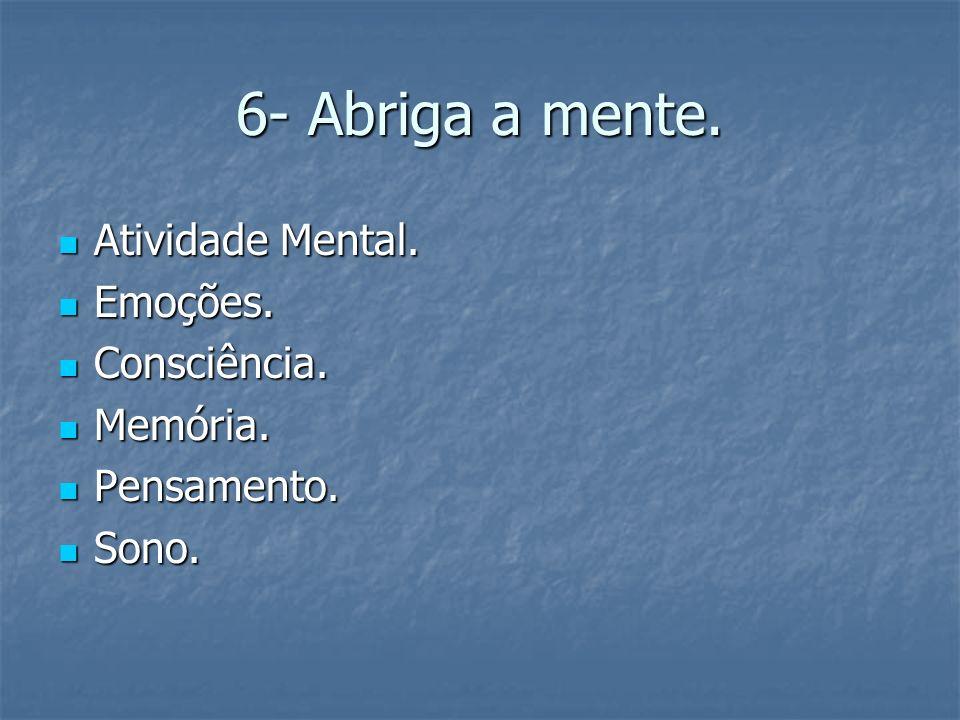 6- Abriga a mente. Atividade Mental. Atividade Mental. Emoções. Emoções. Consciência. Consciência. Memória. Memória. Pensamento. Pensamento. Sono. Son