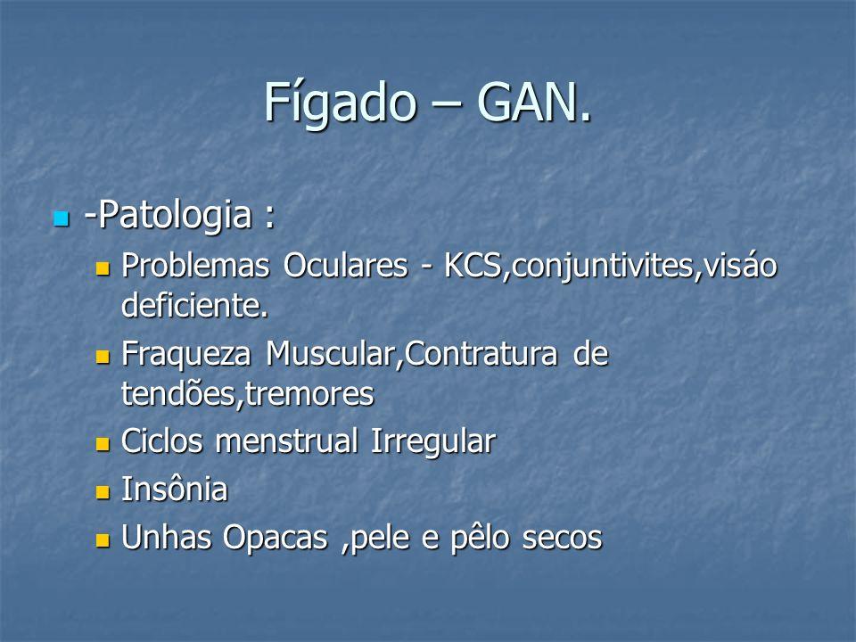 Fígado – GAN. -Patologia : -Patologia : Problemas Oculares - KCS,conjuntivites,visáo deficiente. Problemas Oculares - KCS,conjuntivites,visáo deficien