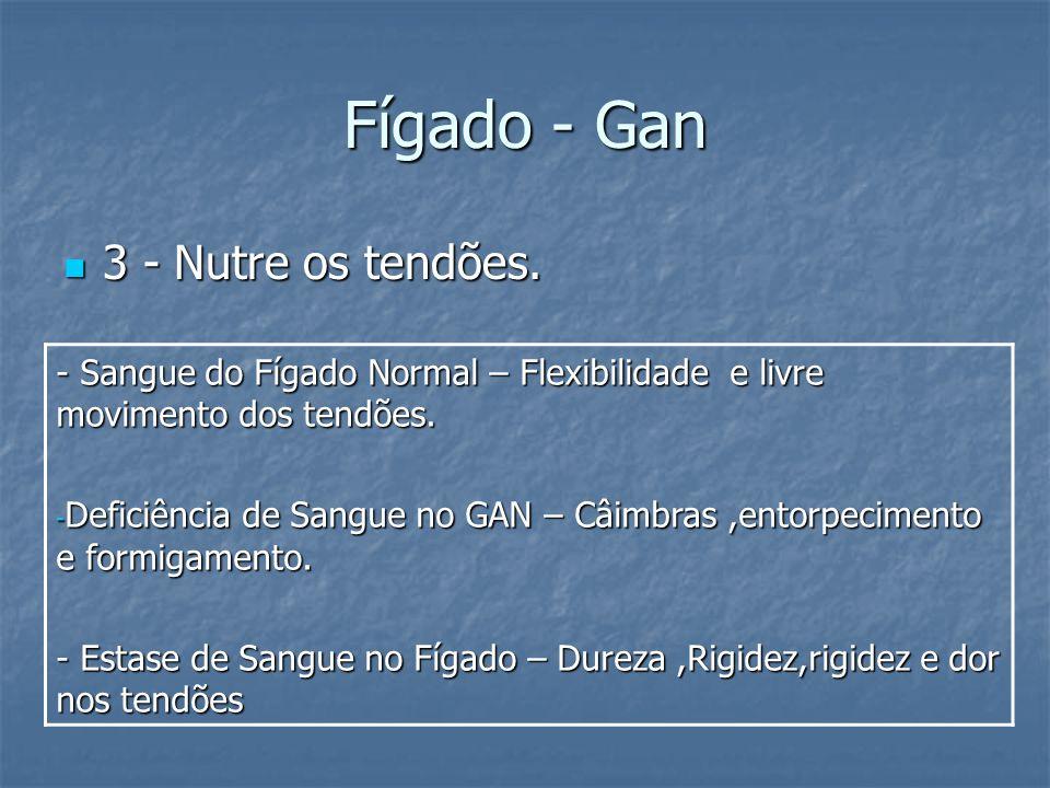 Fígado - Gan 3 - Nutre os tendões. 3 - Nutre os tendões. - Sangue do Fígado Normal – Flexibilidade e livre movimento dos tendões. - Deficiência de San