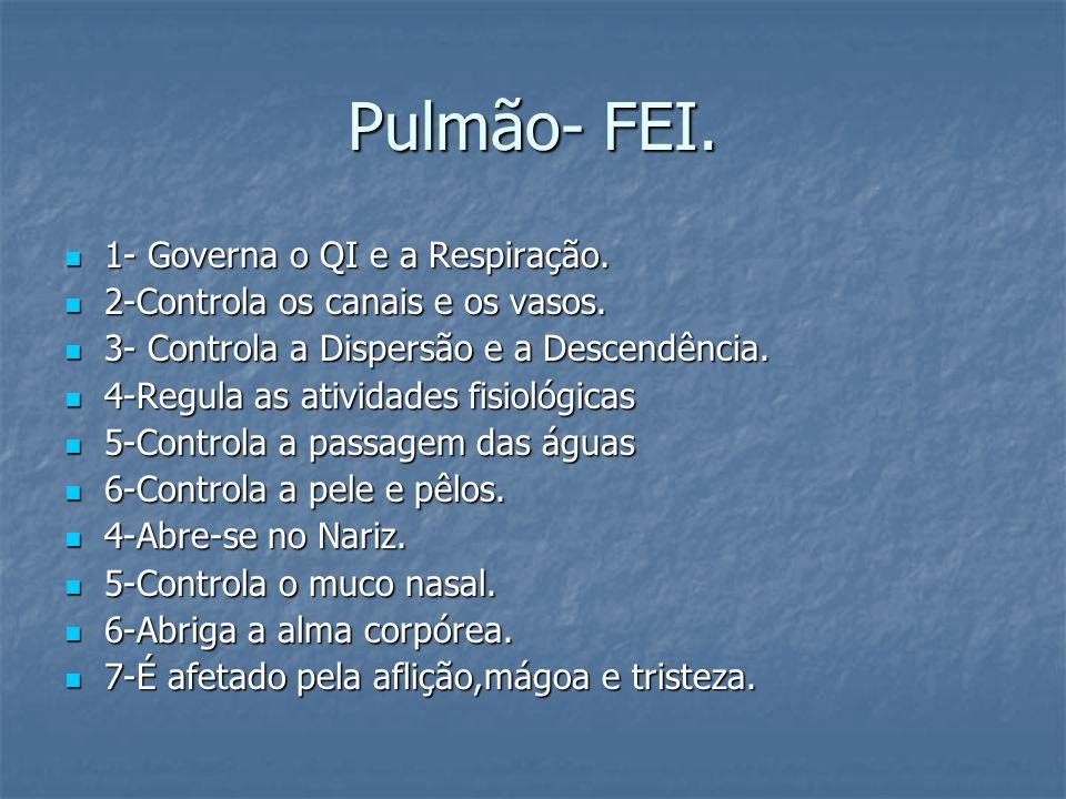 Pulmão- FEI. 1- Governa o QI e a Respiração. 1- Governa o QI e a Respiração. 2-Controla os canais e os vasos. 2-Controla os canais e os vasos. 3- Cont
