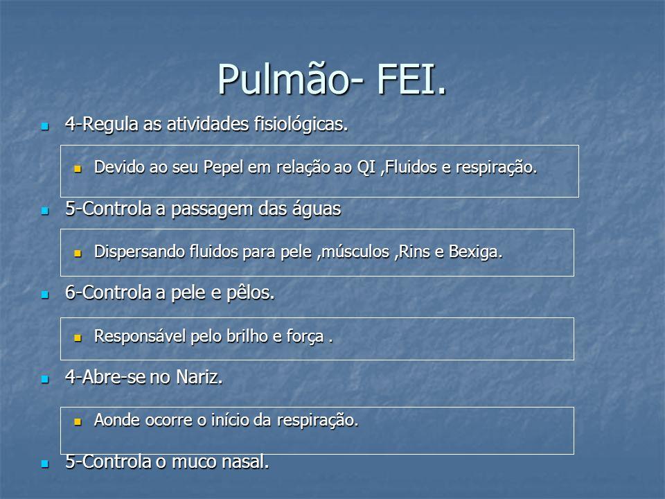 Pulmão- FEI. 4-Regula as atividades fisiológicas. 4-Regula as atividades fisiológicas. Devido ao seu Pepel em relação ao QI,Fluidos e respiração. Devi