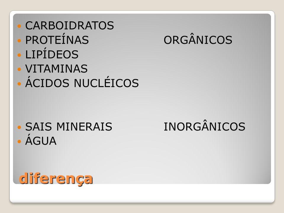 Composição química dos seres vivos