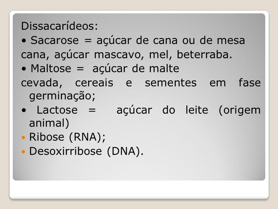Dissacarídeos: Sacarose = açúcar de cana ou de mesa cana, açúcar mascavo, mel, beterraba.