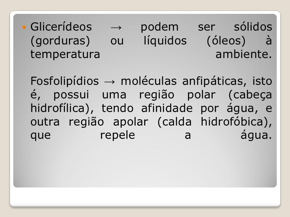 Glicerídeos podem ser sólidos (gorduras) ou líquidos (óleos) à temperatura ambiente.