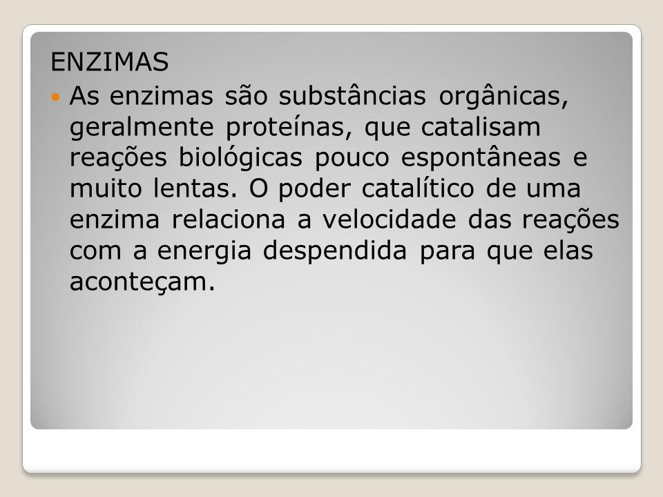 ENZIMAS As enzimas são substâncias orgânicas, geralmente proteínas, que catalisam reações biológicas pouco espontâneas e muito lentas.