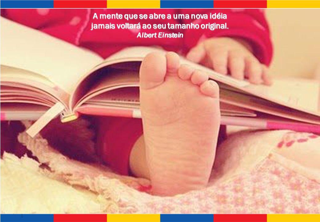 SISTEMA LEARNING FUN DE ENSINO A mente que se abre a uma nova idéia jamais voltará ao seu tamanho original. Albert Einstein