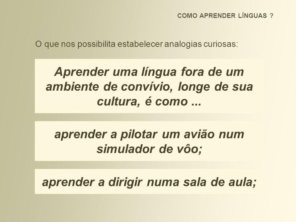Aprender uma língua fora de um ambiente de convívio, longe de sua cultura, é como... aprender a pilotar um avião num simulador de vôo; aprender a diri