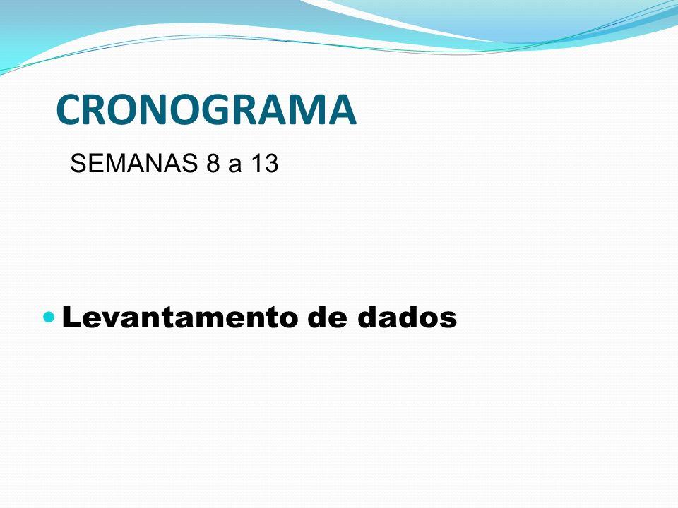 CRONOGRAMA SEMANAS 8 a 13 Levantamento de dados