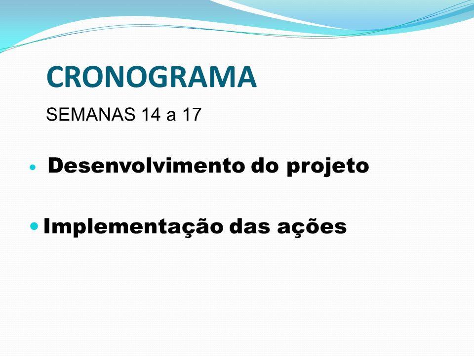 CRONOGRAMA SEMANAS 14 a 17 Desenvolvimento do projeto Implementação das ações