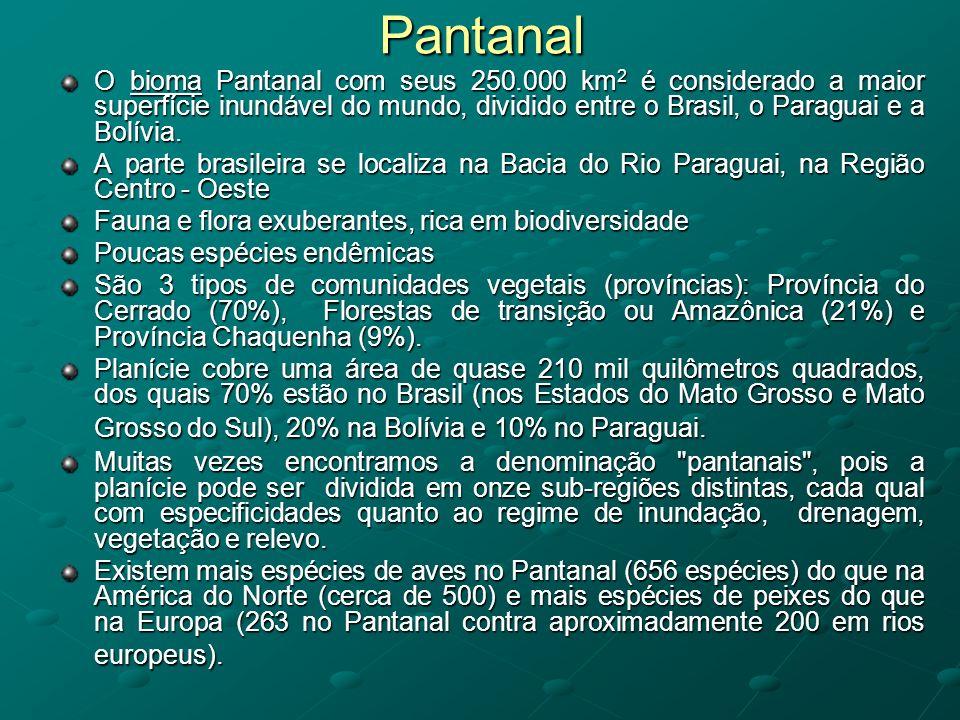 Pantanal O bioma Pantanal com seus 250.000 km 2 é considerado a maior superfície inundável do mundo, dividido entre o Brasil, o Paraguai e a Bolívia.