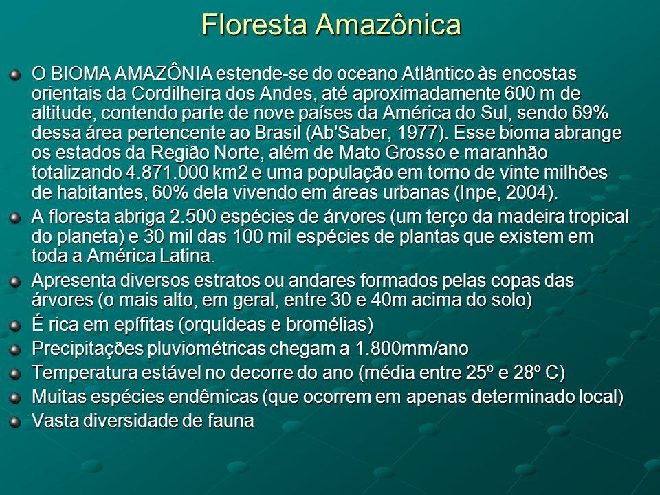 Floresta Amazônica O BIOMA AMAZÔNIA estende-se do oceano Atlântico às encostas orientais da Cordilheira dos Andes, até aproximadamente 600 m de altitu