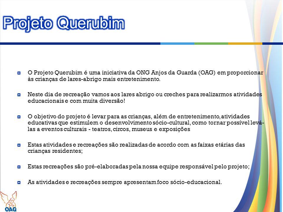 O Projeto Querubim é uma iniciativa da ONG Anjos da Guarda (OAG) em proporcionar às crianças de lares-abrigo mais entretenimento. Neste dia de recreaç