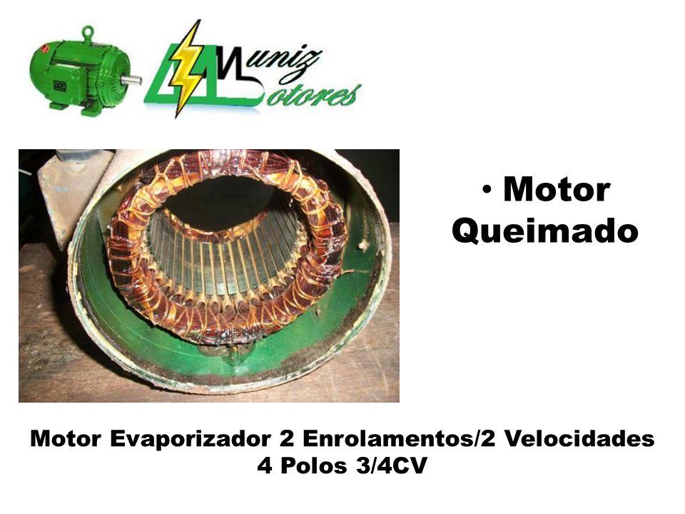 Motor Evaporizador 2 Enrolamentos/2 Velocidades 4 Polos 3/4CV Motor Queimado