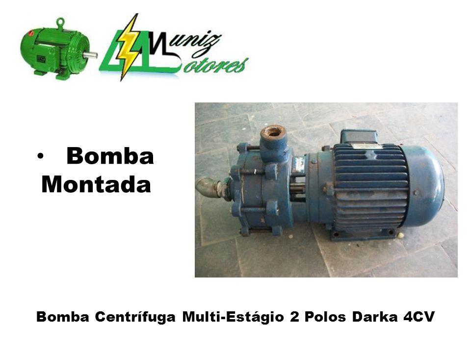 Bomba Centrífuga Multi-Estágio 2 Polos Darka 4CV Bomba Montada