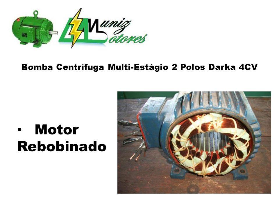 Bomba Centrífuga Multi-Estágio 2 Polos Darka 4CV Motor Rebobinado