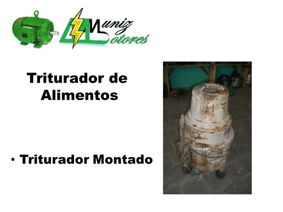 Triturador de Alimentos Motor rebobinado Substituição de rolamento