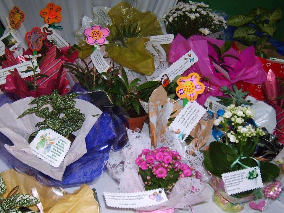 Lançamento do Projeto Planta e Poesia na Festa do Dia Nacional do Idoso (01/10/2010)