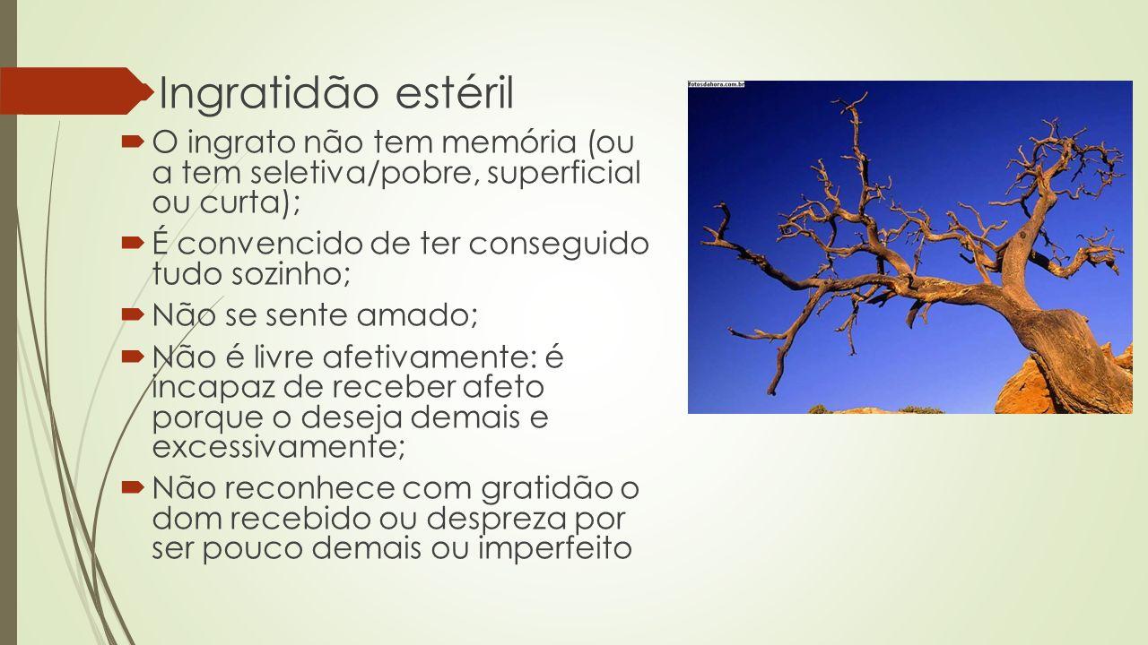 Ingratidão estéril O ingrato não tem memória (ou a tem seletiva/pobre, superficial ou curta); É convencido de ter conseguido tudo sozinho; Não se sent
