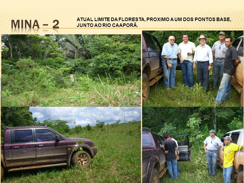 ATUAL LIMITE DA FLORESTA, PROXIMO A UM DOS PONTOS BASE, JUNTO AO RIO CAAPORÃ.