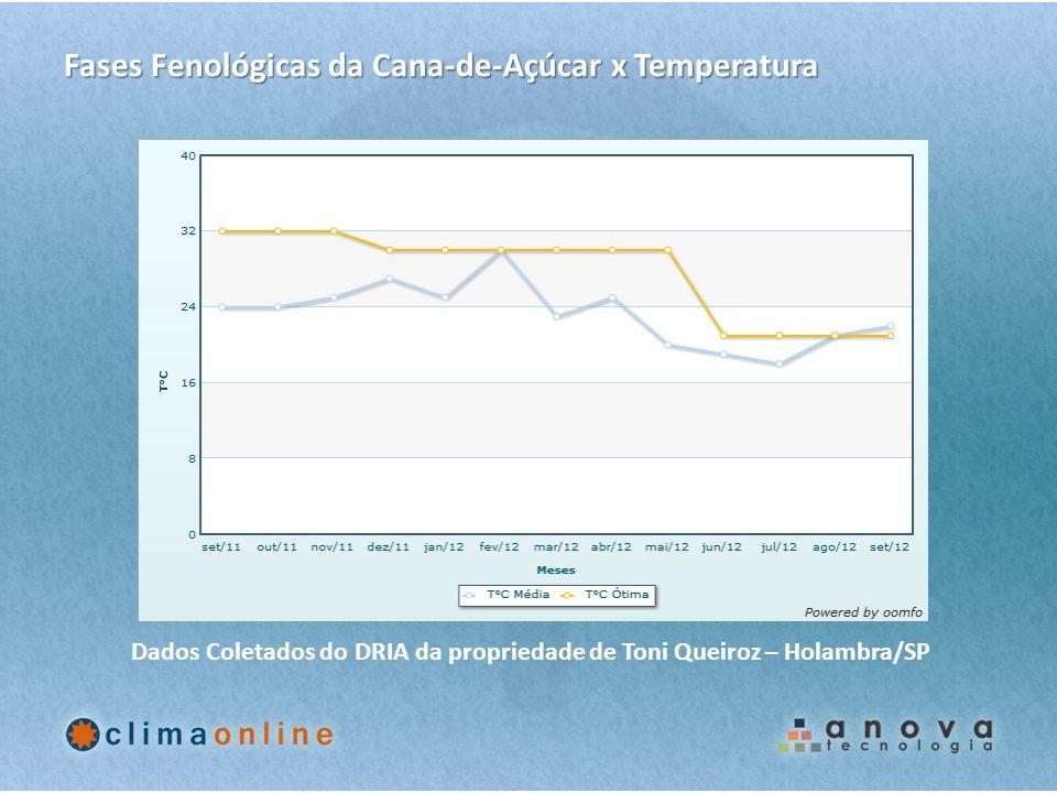 Dados Coletados do DRIA da propriedade de Toni Queiroz – Holambra/SP Fases Fenológicas da Cana-de-Açúcar x Temperatura