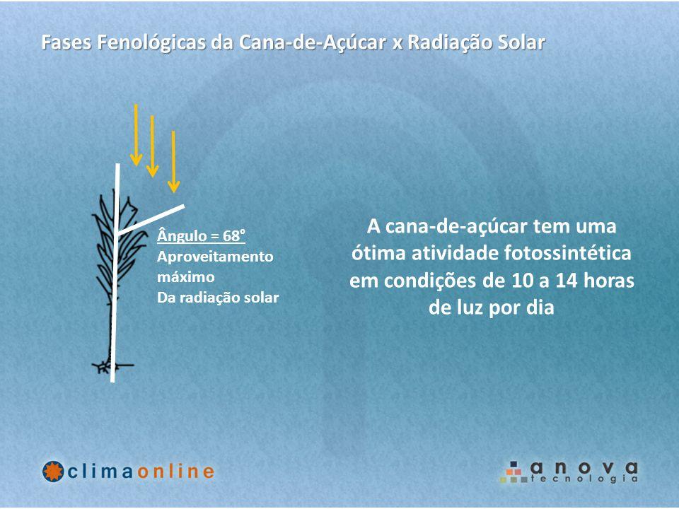 Ângulo = 68° Aproveitamento máximo Da radiação solar Fases Fenológicas da Cana-de-Açúcar x Radiação Solar A cana-de-açúcar tem uma ótima atividade fot