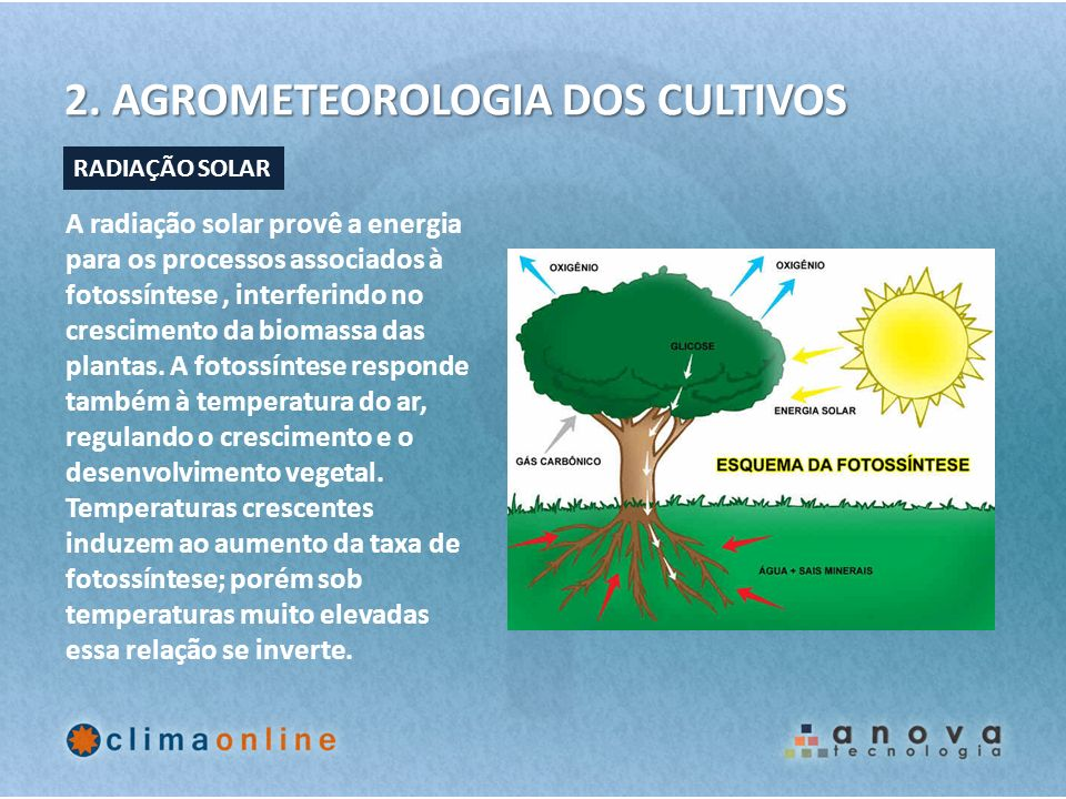 2. AGROMETEOROLOGIA DOS CULTIVOS A radiação solar provê a energia para os processos associados à fotossíntese, interferindo no crescimento da biomassa
