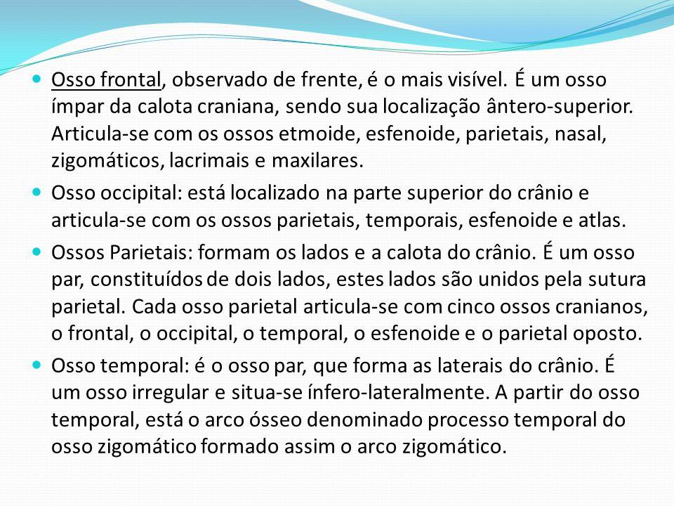 BIBIOGRAFIA Radiologia – Editora Difusão Cultural do livro – 2010, São Paulo; Anatomia Humana – Série Atlas Humanas, Editora Ática; http://www.dicafatal.com/atlas-anatomia-humana- esqueleto-ossos-do-craneo-e-face/.