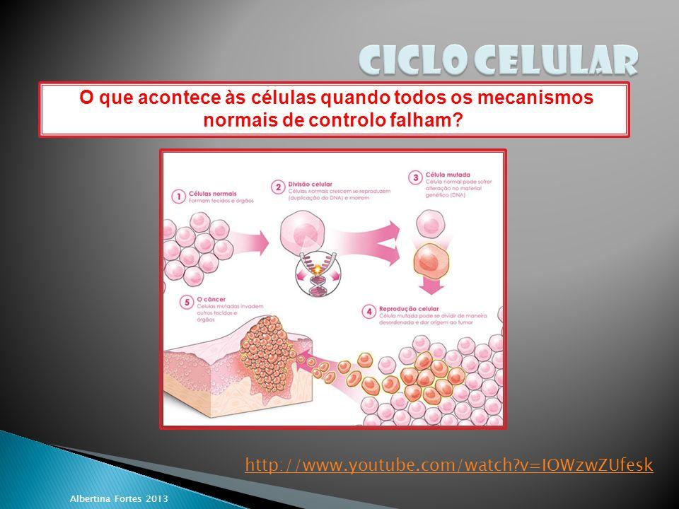 Albertina Fortes 2013 O que acontece às células quando todos os mecanismos normais de controlo falham.