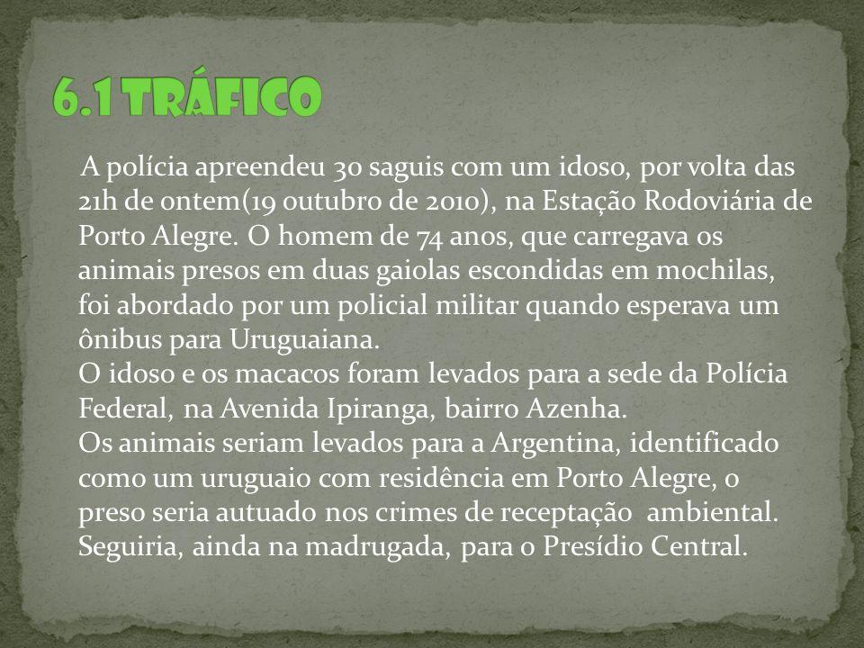 A polícia apreendeu 30 saguis com um idoso, por volta das 21h de ontem(19 outubro de 2010), na Estação Rodoviária de Porto Alegre. O homem de 74 anos,