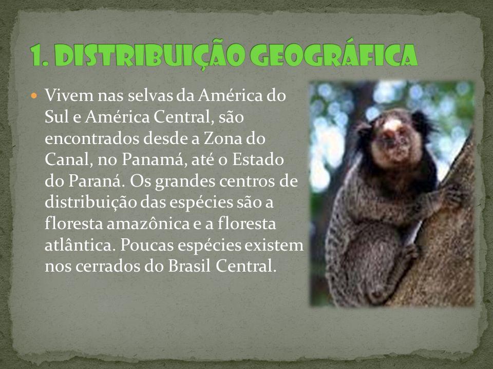 Vivem nas selvas da América do Sul e América Central, são encontrados desde a Zona do Canal, no Panamá, até o Estado do Paraná. Os grandes centros de