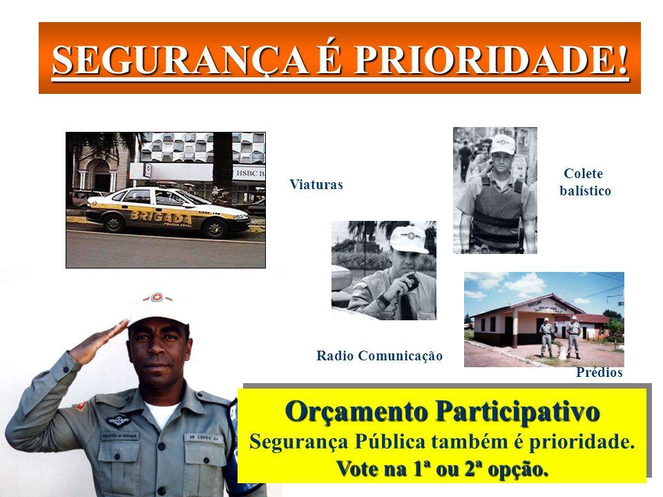 Estratégias de Prevenção Instituir colegiados multidisciplinares Participação de representantes dos segmentos sociais; Estimular a comunidade para a i
