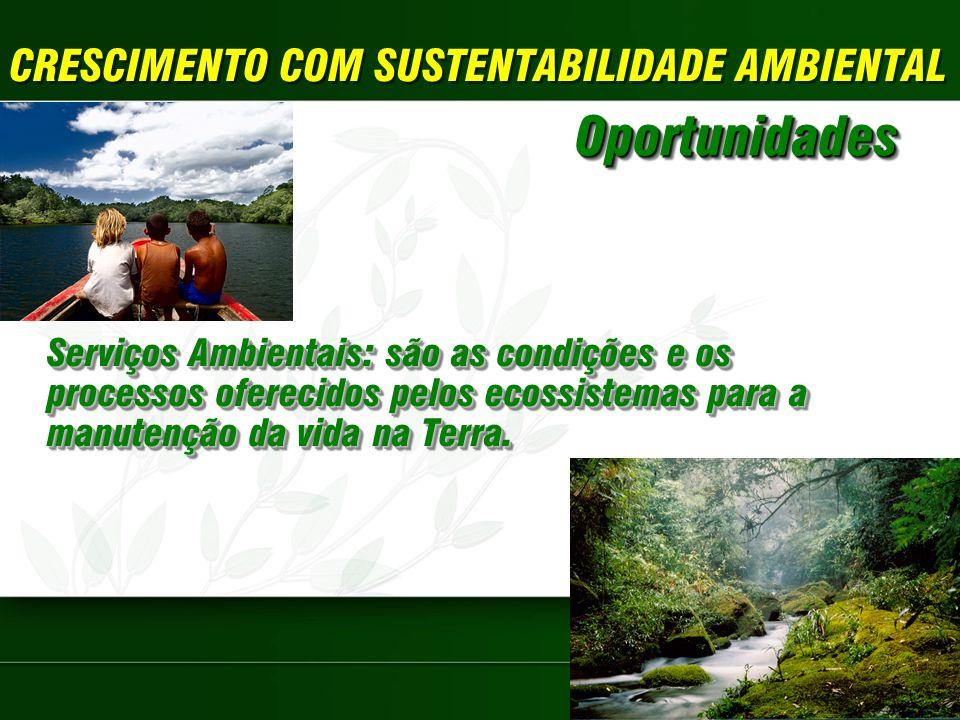 CRESCIMENTO COM SUSTENTABILIDADE AMBIENTAL Serviços Ambientais: são as condições e os processos oferecidos pelos ecossistemas para a manutenção da vida na Terra.