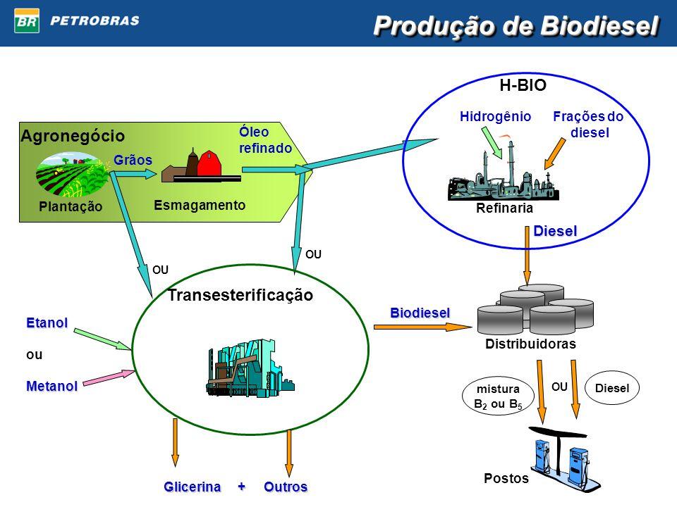 Produção de Biodiesel Biodiesel Glicerina + Outros Refinaria HidrogênioFrações do diesel Postos Distribuidoras Agronegócio Plantação Esmagamento Grãos