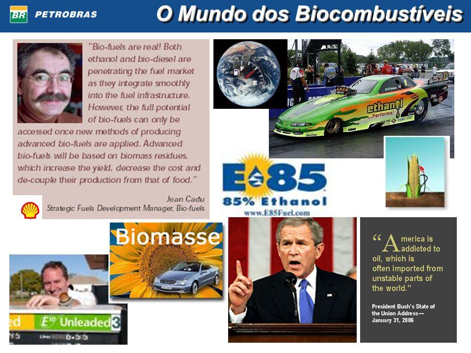 O Mundo dos Biocombustíveis