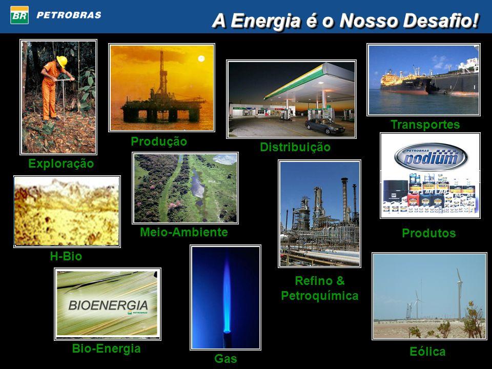 A Energia é o Nosso Desafio! Exploração Produção Gas Distribuição Transportes Meio-Ambiente Refino & Petroquímica Produtos Eólica H-BioBio-Energia