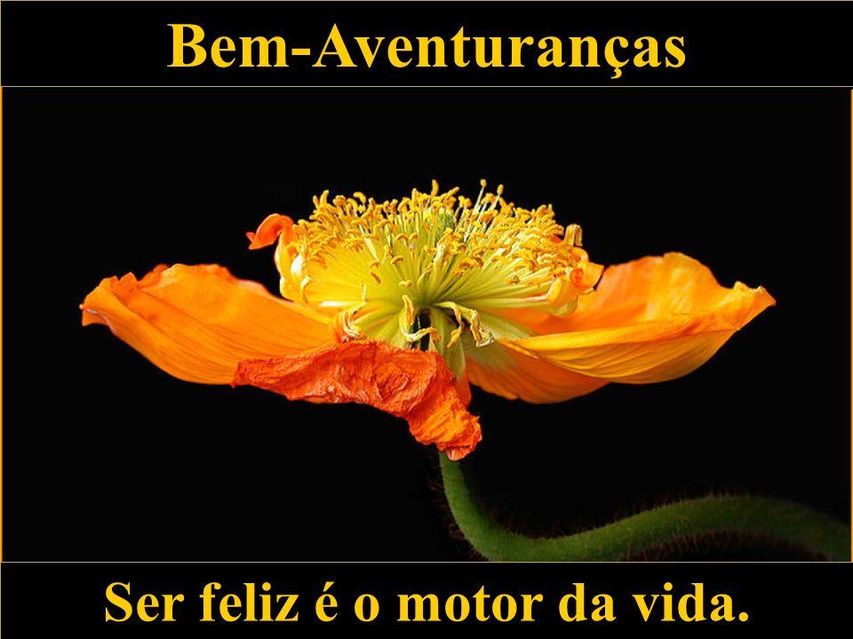 Bem-Aventuranças Bem-Aventuranças Ser feliz é o motor da vida. Ser feliz é o motor da vida.