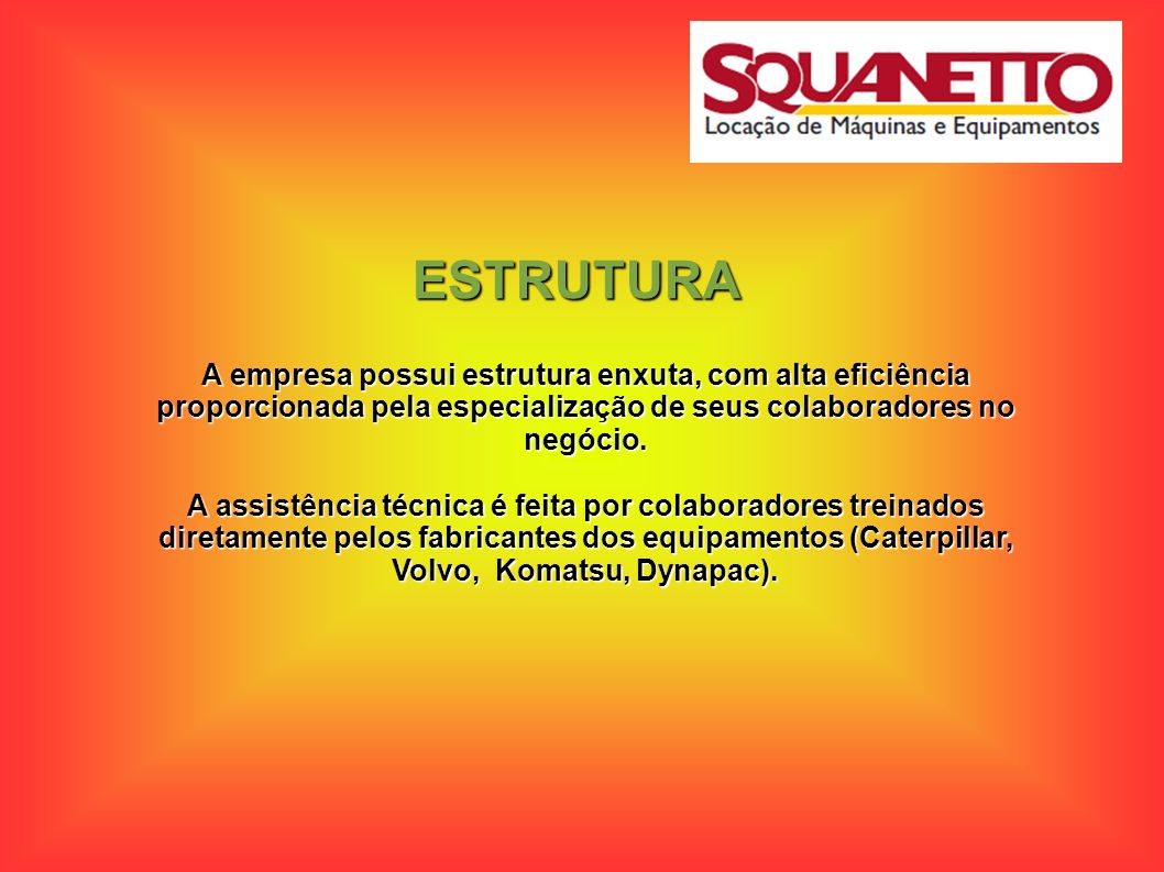 ESTRUTURA A empresa possui estrutura enxuta, com alta eficiência proporcionada pela especialização de seus colaboradores no negócio. A assistência téc