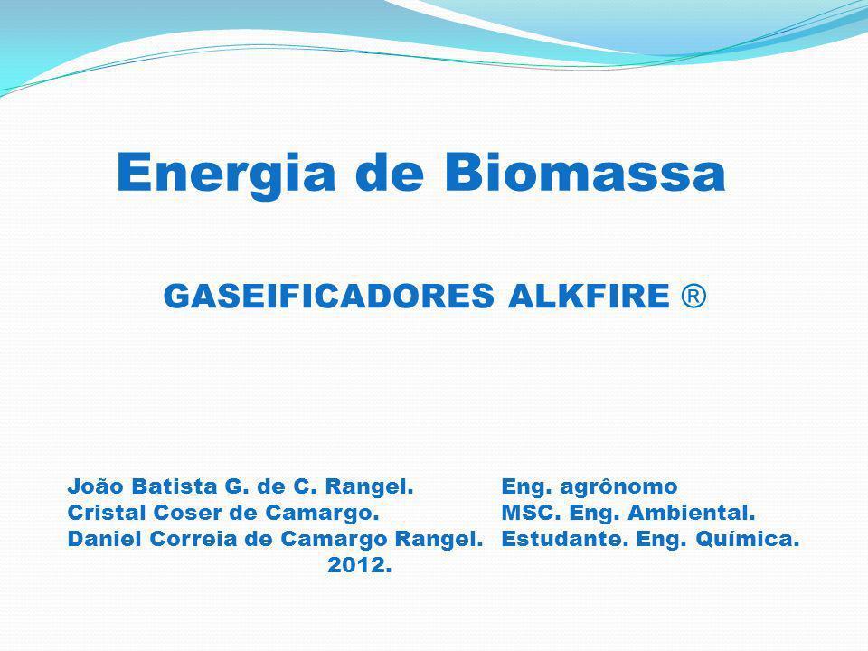GASEIFICADORES ALKFIRE ® Energia de Biomassa João Batista G.