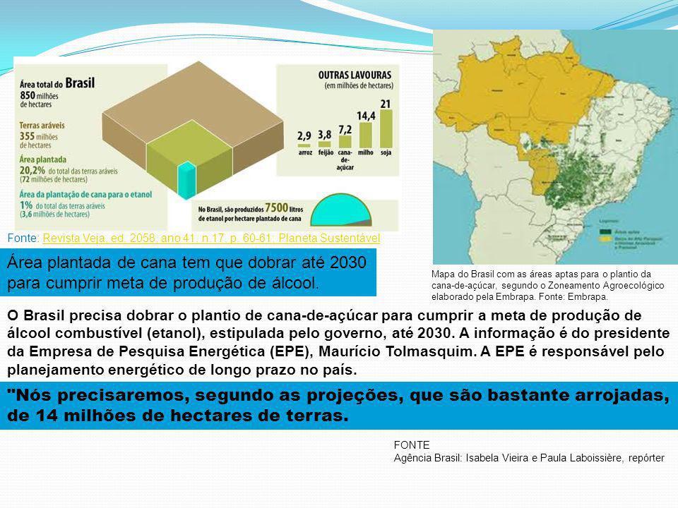 Programa Bioeletricidade 2011 - 2020 1.