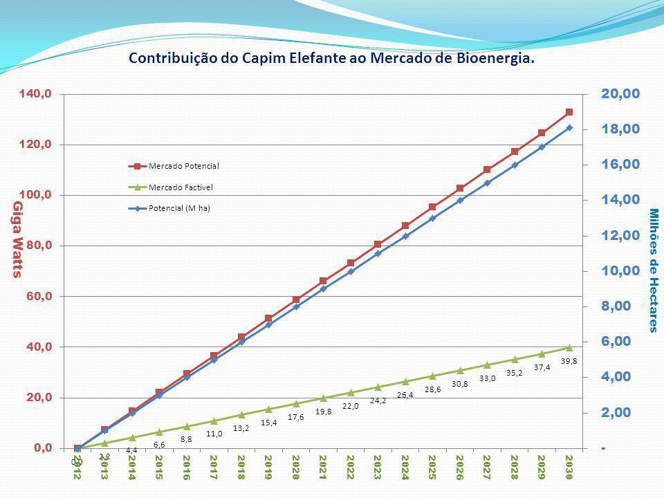 Produção de Biomassa Área Plantada4500hectares Produtividade do capim50t/ha/ano PCI do capim (25% de umidade) 2.582kCal/Kg Densidade do capim200Kg/m³