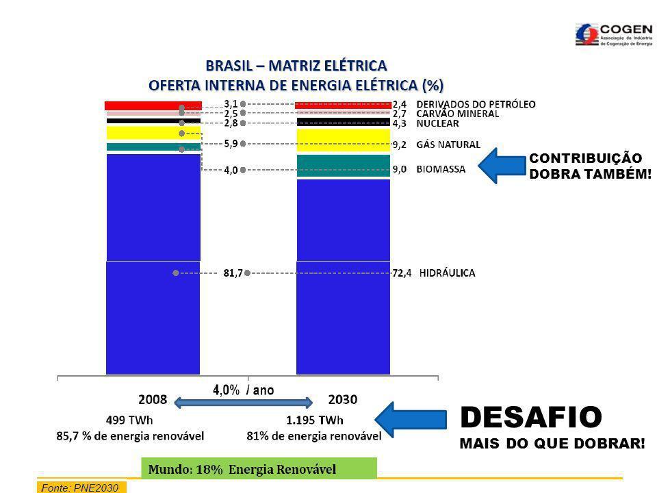 TÓPICOS PRINCIPAIS: 1- O DESAFIO DA ENERGIA.2- A OPORTUNIDADE.
