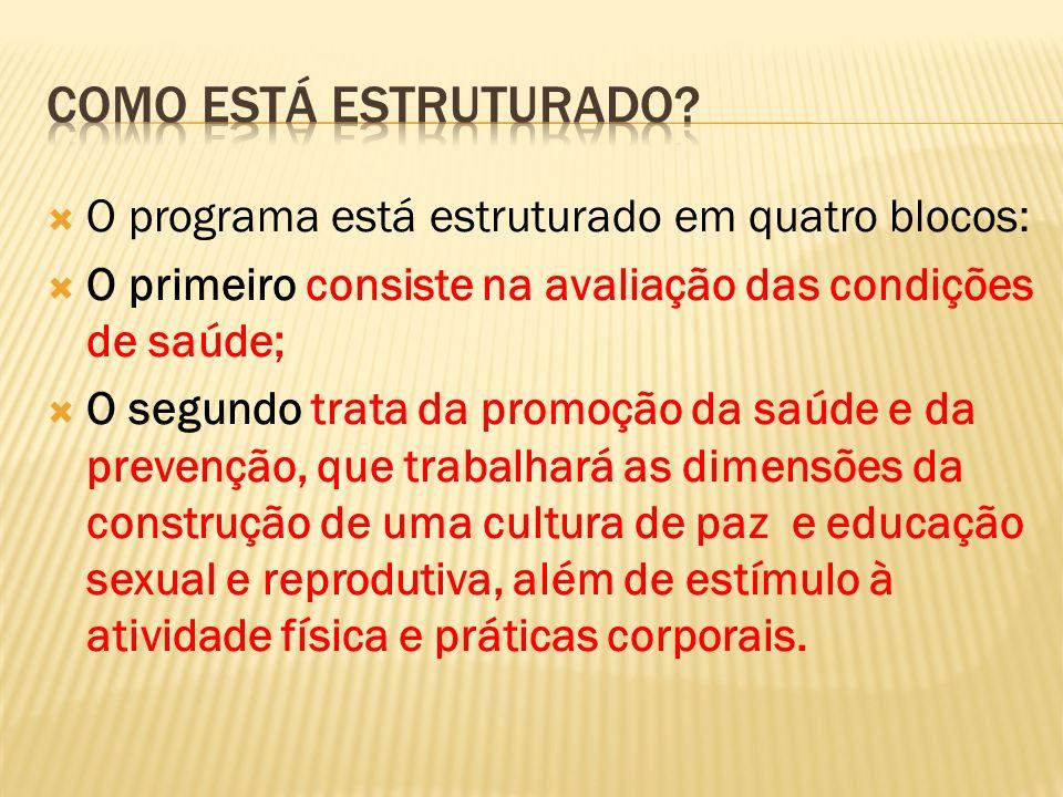 O terceiro é voltado à educação permanente e capacitação de profissionais e de jovens.