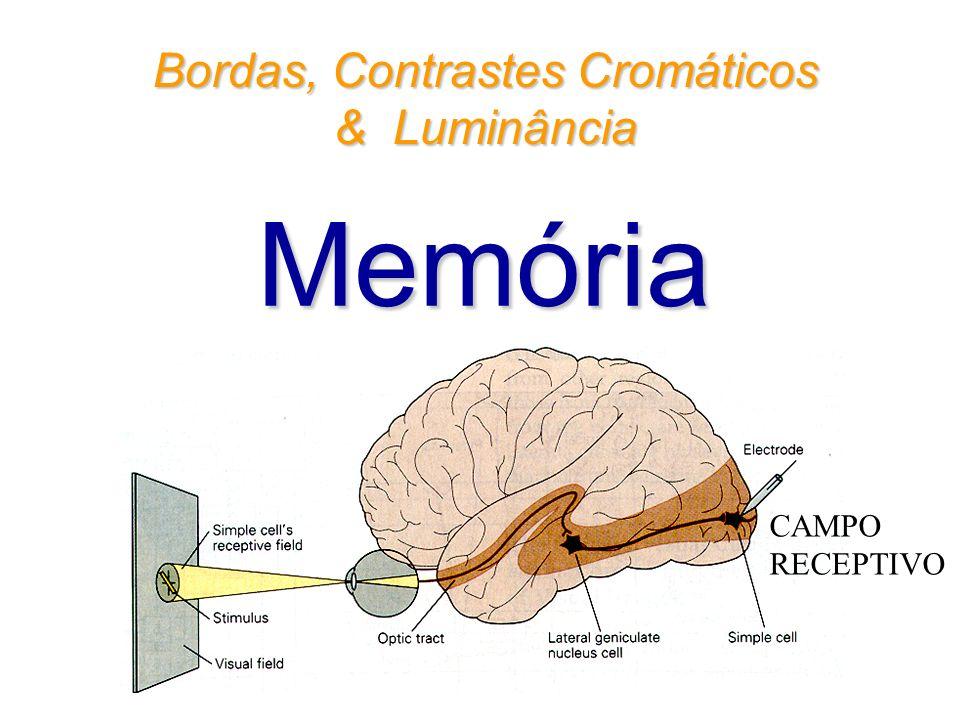 CAMPO RECEPTIVO Bordas, Contrastes Cromáticos & Luminância Memória