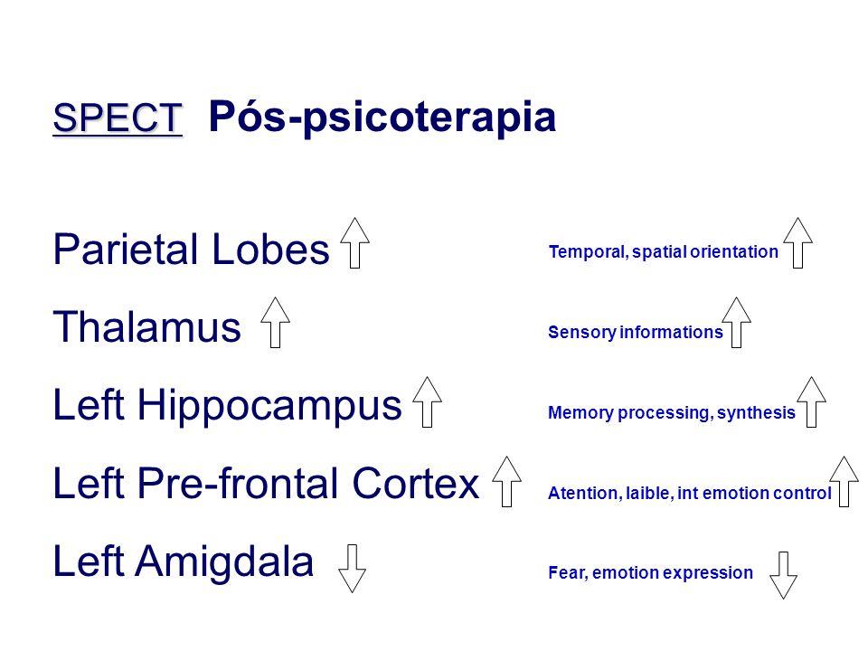 Parietal Lobes Thalamus Left Hippocampus Left Pre-frontal Cortex Left Amigdala Temporal, spatial orientation Sensory informations Memory processing, s