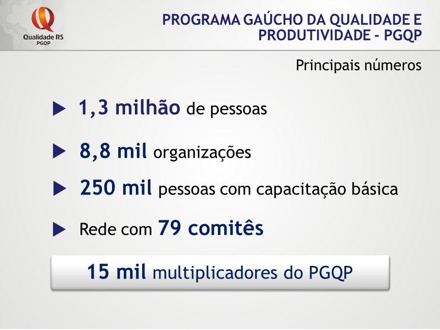 PROGRAMA GAÚCHO DA QUALIDADE E PRODUTIVIDADE - PGQP Principais números 1,3 milhão de pessoas 8,8 mil organizações 250 mil pessoas com capacitação bási
