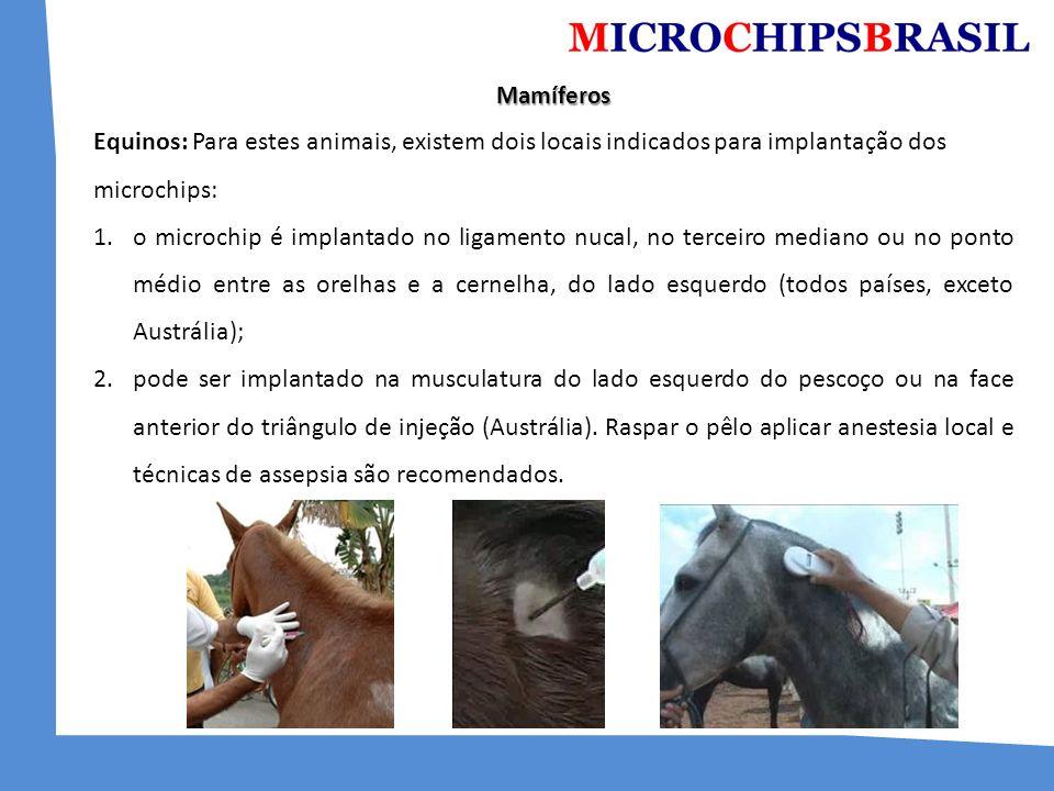 Mamíferos Equinos: Para estes animais, existem dois locais indicados para implantação dos microchips: 1.o microchip é implantado no ligamento nucal, n