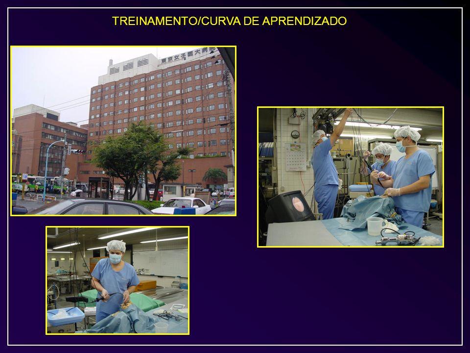 TREINAMENTO/CURVA DE APRENDIZADO