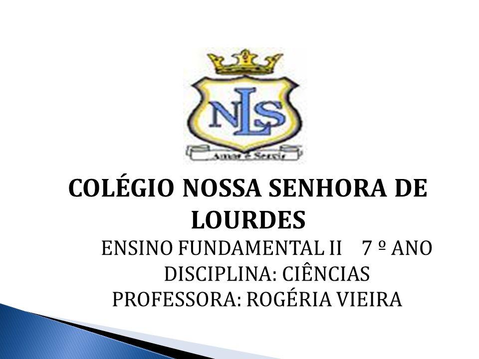 COLÉGIO NOSSA SENHORA DE LOURDES ENSINO FUNDAMENTAL II 7 º ANO DISCIPLINA: CIÊNCIAS PROFESSORA: ROGÉRIA VIEIRA