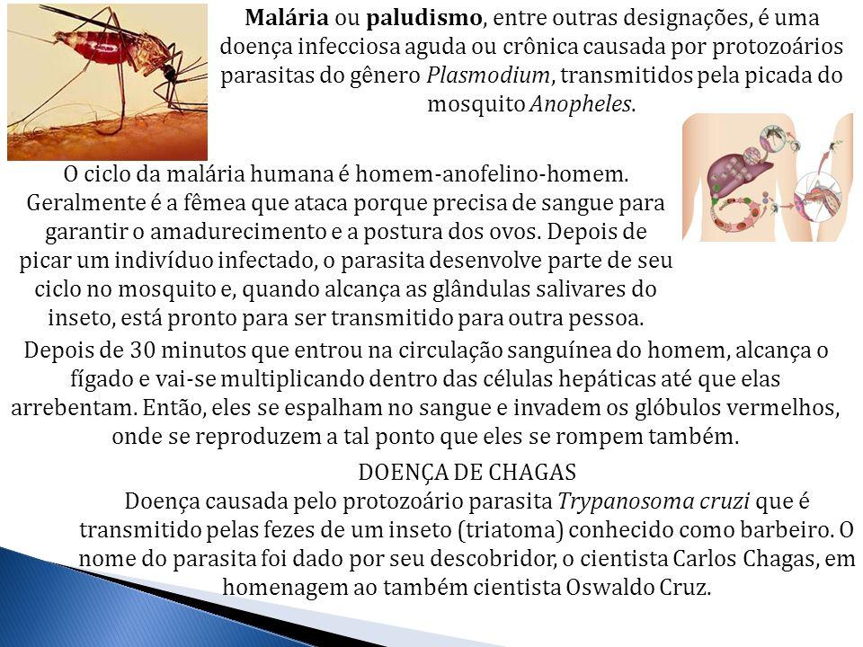 Malária ou paludismo, entre outras designações, é uma doença infecciosa aguda ou crônica causada por protozoários parasitas do gênero Plasmodium, tran
