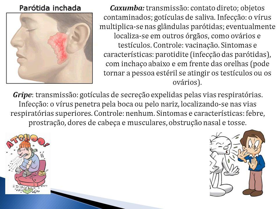 Caxumba: transmissão: contato direto; objetos contaminados; gotículas de saliva. Infecção: o vírus multiplica-se nas glândulas parótidas; eventualment